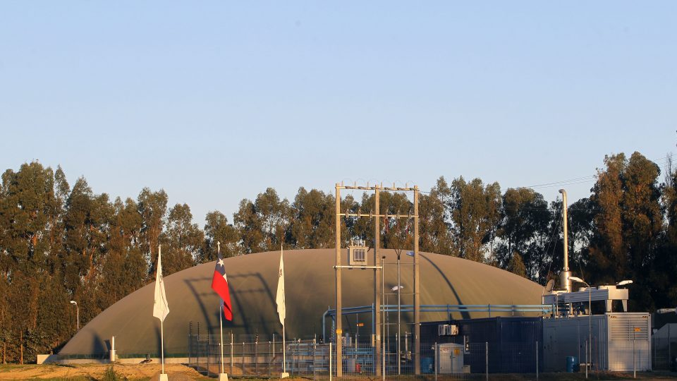 Sector porcino chileno aporta energía limpia con 13 proyectos de biogás