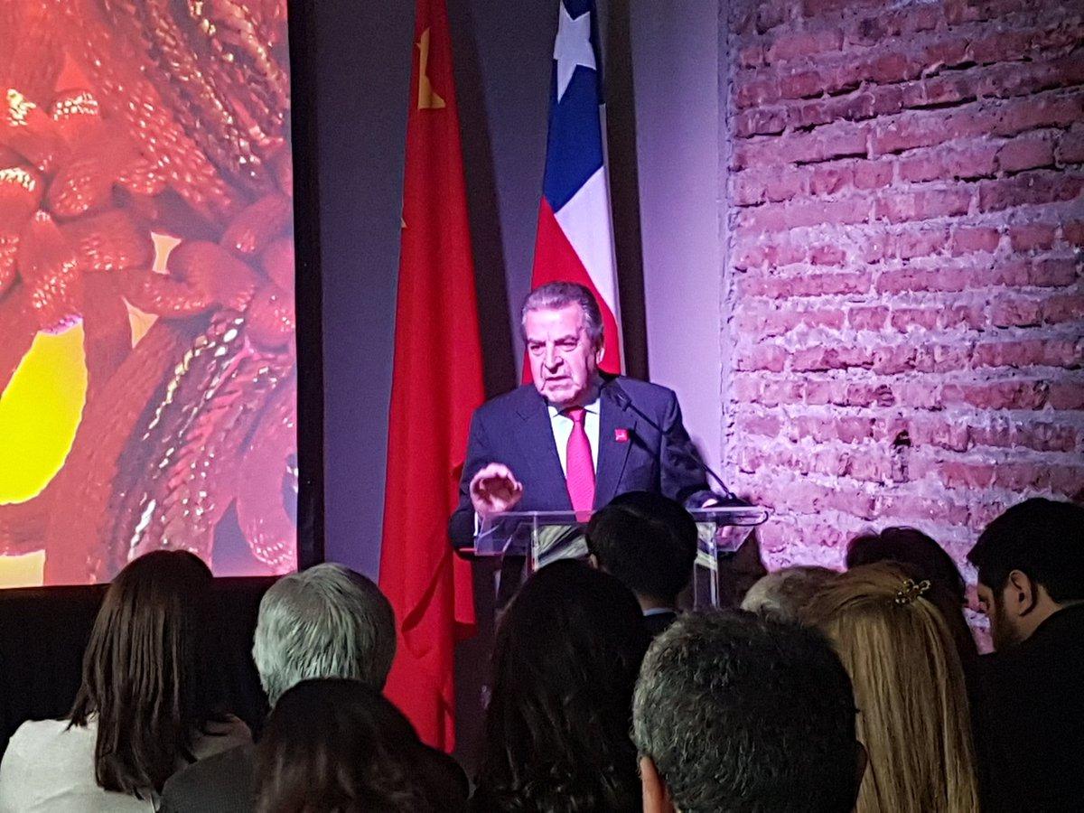 El ex Presidente Eduardo Frei encabezara la gira, en su rol de embajador en Misión Especial para el Asia Pacífico.
