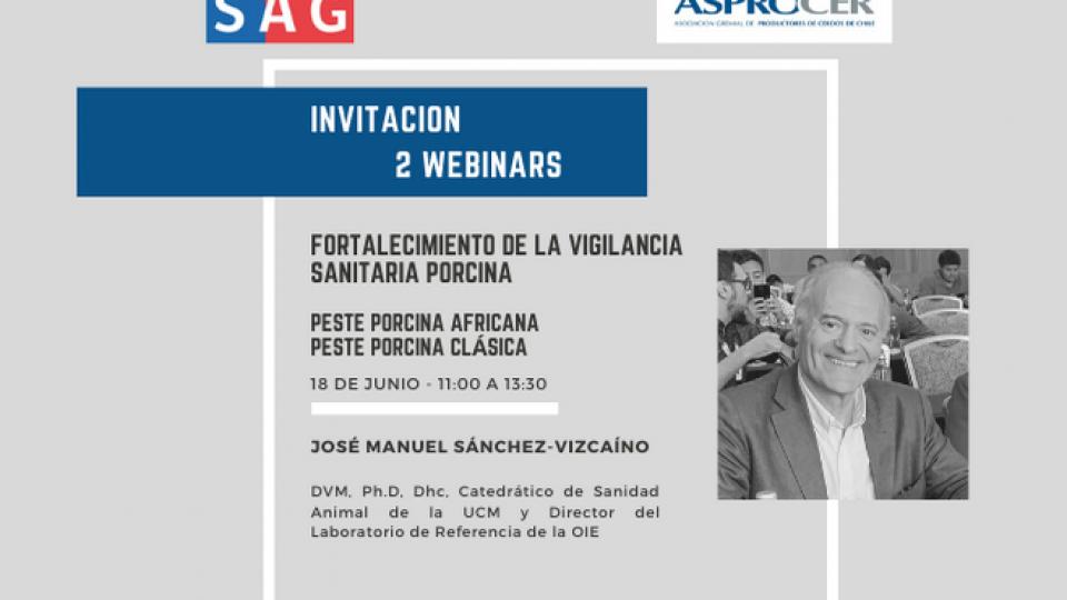 Webinar Asprocer y SAG: Fortalecimiento de la vigilancia sanitaria porcina con José Manuel Sánchez-Vizcaíno