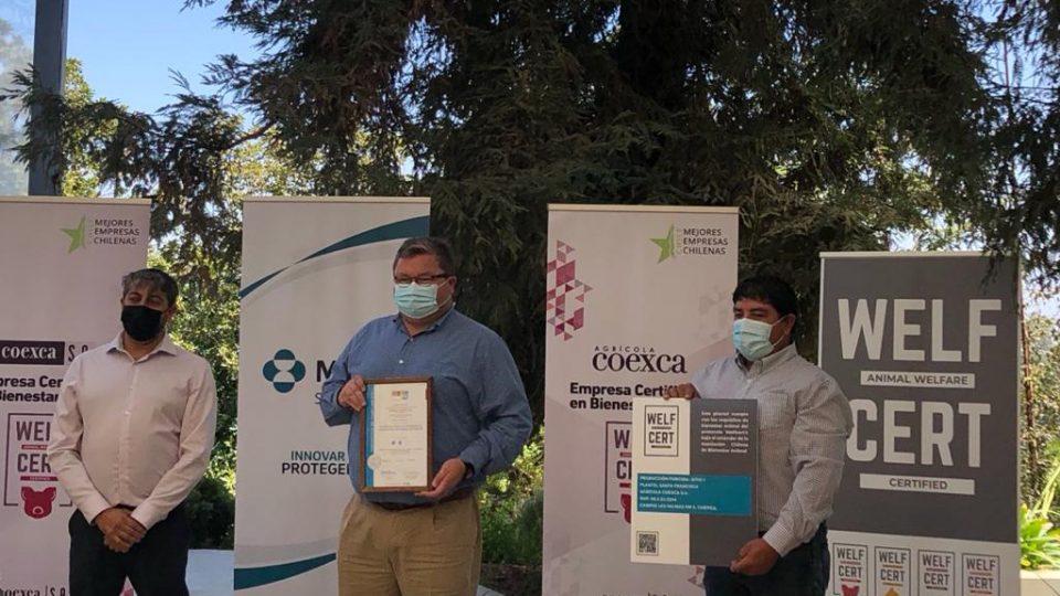 Empresas Coexca S.A. y su subsidiaria agrícola recibieron certificación en Bienestar Animal